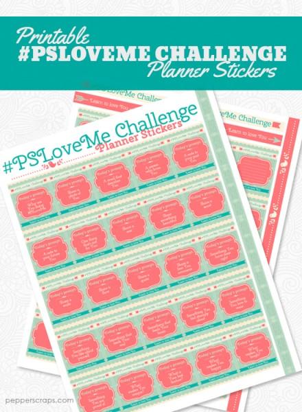 PSLoveMe-Challenge-Planner-Stickers