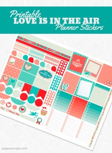 Printable-Love-is-in-the-Air-Planner-Stickers